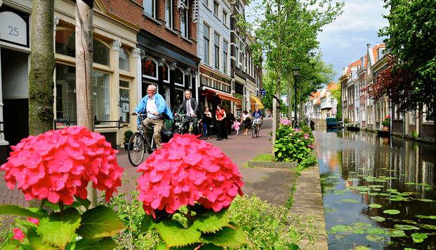 Descubre Delft con paseo en barco