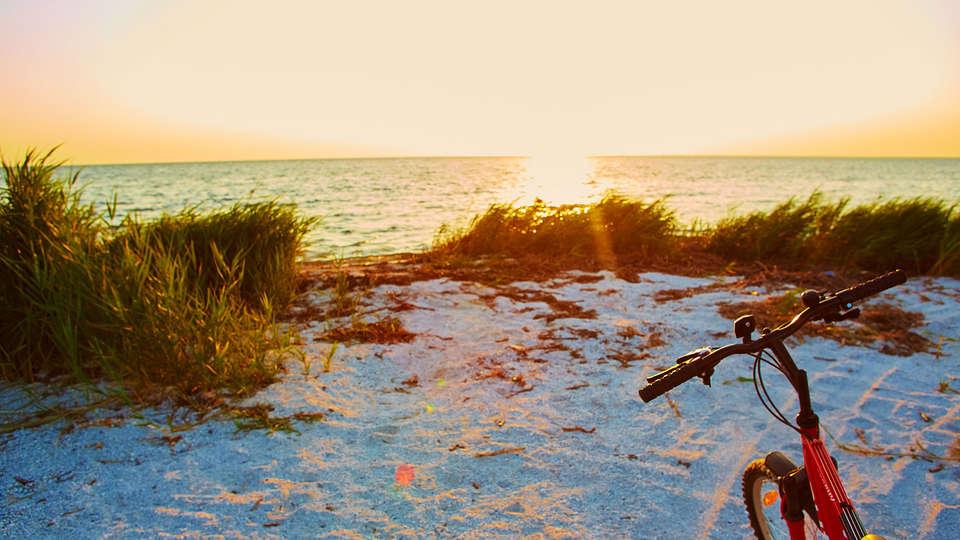 De Stokerij Hotel - EDIT_beach.jpg