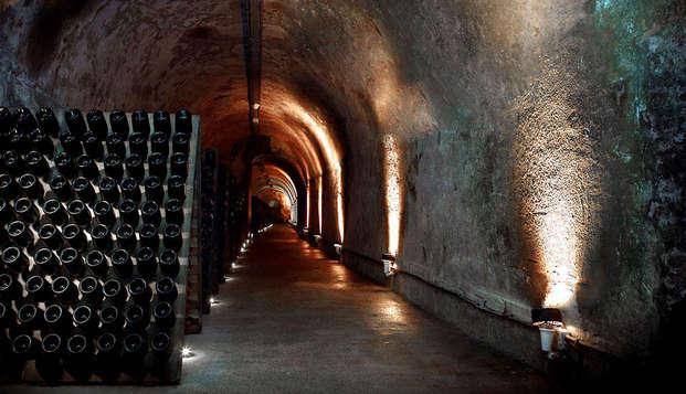 Visite de cave et dégustation à Reims