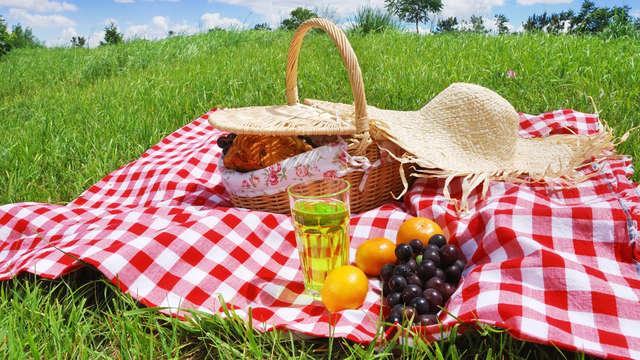 Minivacaciones en el centro de Castellón con picnic y visita a bodega (desde 2 noches)