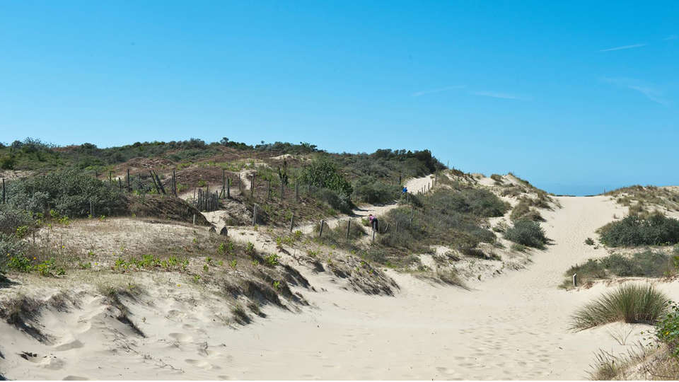 Holiday Suites Westende - edit_duinen.jpg