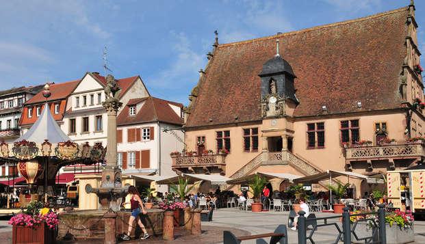 Diana Hotel Restaurant Et Spa - molsheim