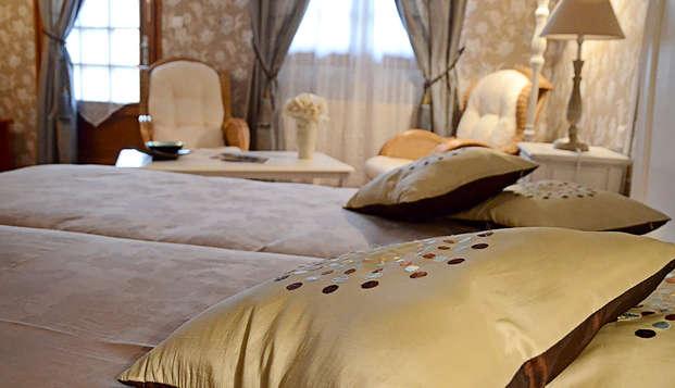 Hotel Le Fiacre - Room