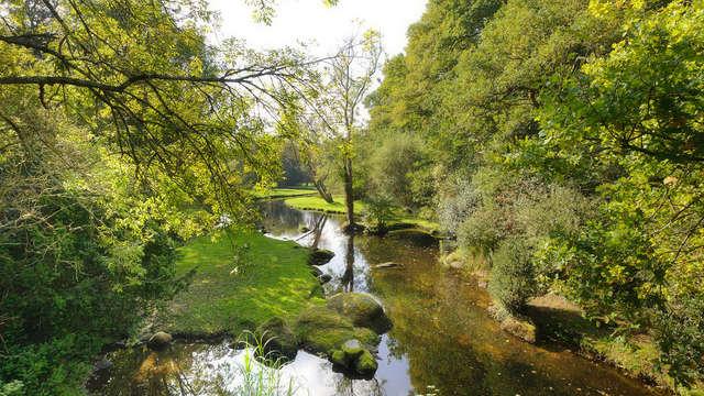 Moulins du Duc