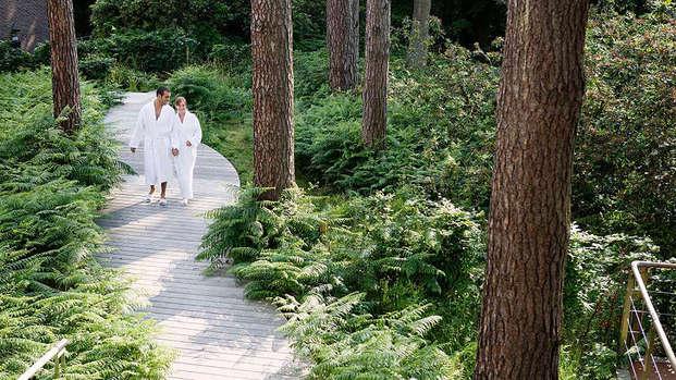 Speciale zomeraanbieding: verblijf in half pension middenin het woud van Soignes