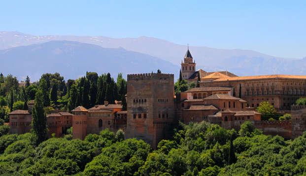 Descubre Granada con una visita guiada