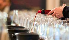 ingresso al museo del vino per 2 adulti