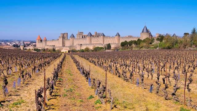 Descubre el castillo y las murallas de la ciudad de Carcasona