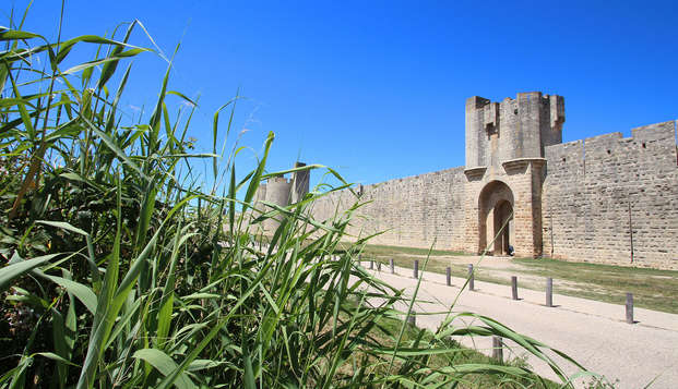 Estancia en la Petite Camargue y visita a las murallas de Aigues-Mortes