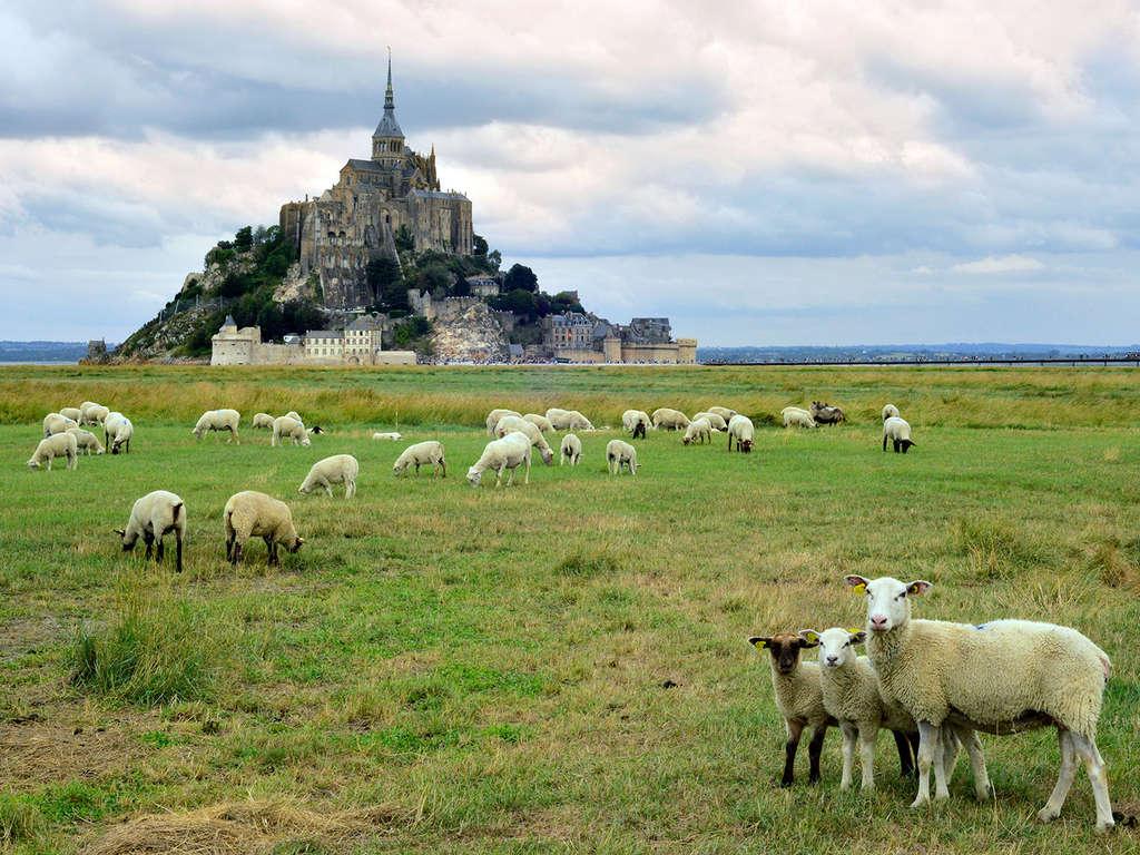 Séjour Ile-et-Vilaine - Découvrez Rennes et l'Abbaye du Mont-St-Michel le temps d'un week-end  - 3*