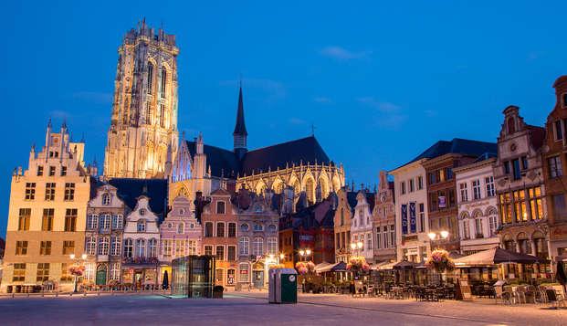 Kom tot rust en ontdek de stad in hartje Mechelen