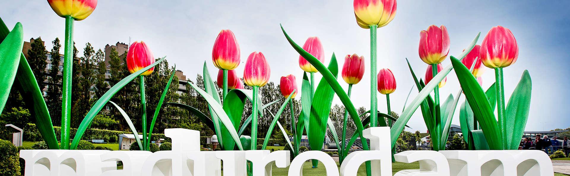 Découvrez le quartier Scheveningen et le parc Madurodam