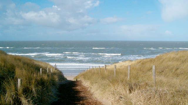Strand, duinen en natuur nabij Castricum aan Zee