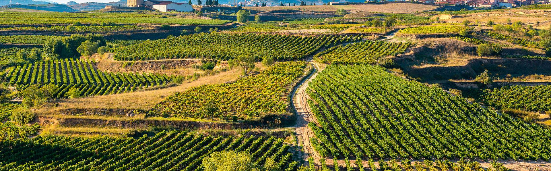 Enología en Logroño con visita a bodega con cata de sus vinos y acceso a gimnasio