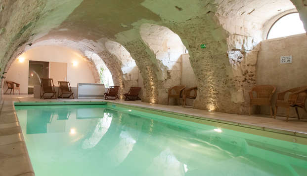 Hotel The Originals Domaine de la Courbe ex Relais du Silence - pool