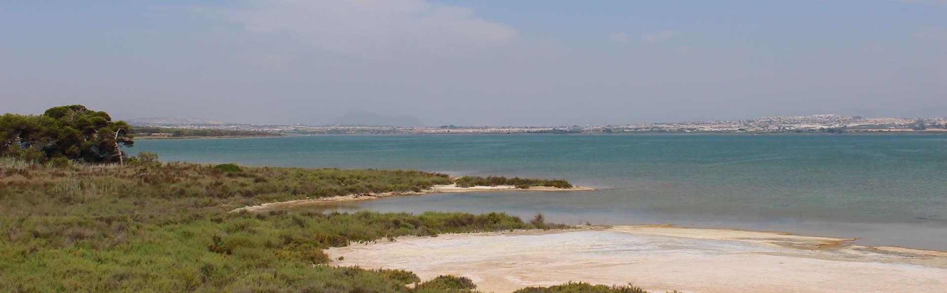 Hotel Playas de Torrevieja - edit_destino3.jpg