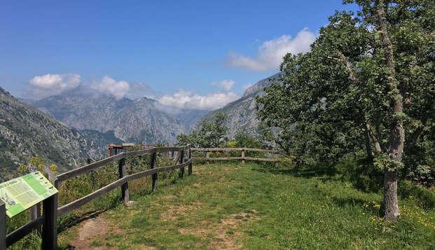 Especial Minivacaciones: Escapada con Cena y Spa cerca de los Picos de Europa (desde 3 noches)