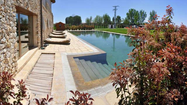 Escapada con acceso a Spa y ambiente romántico en un hotel con encanto en la Ribera del Duero