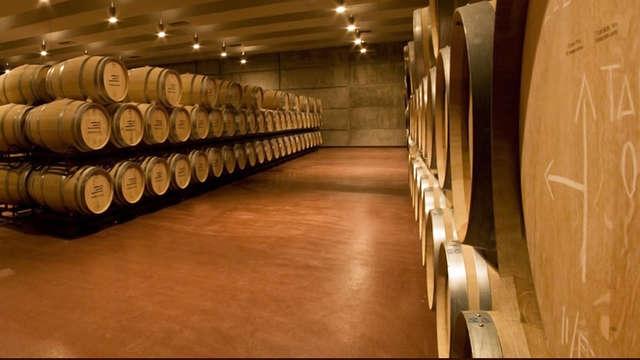 Enología en las orillas del Duero con visita al Museo del Vino Ribera del Duero y cata de vinos
