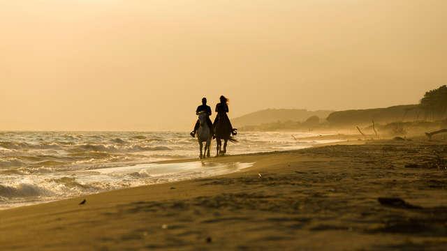 Découvrez Doñana au cours d'une promenade à cheval et séjournez dans un hôtel de charme