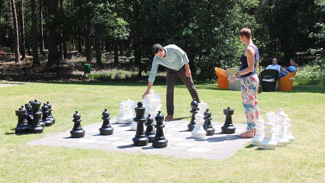 Landgoed Kapellerput - ajedrez