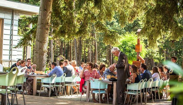 Landgoed Kapellerput - Hotelbar-terras Kapellerput