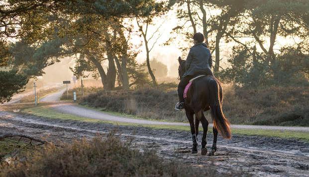 Landgoed Kapellerput - Kapellerput paarden