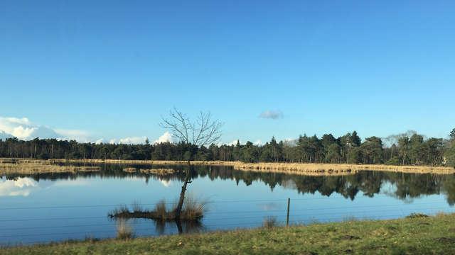 Landgoed Kapellerput - strabrechtse-heide-