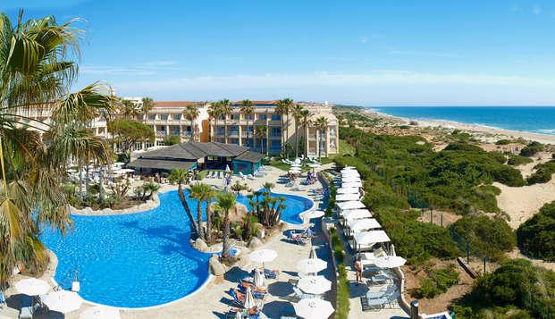 Disfruta de este verano con los tuyos a primera línea de mar en un hotel 4*