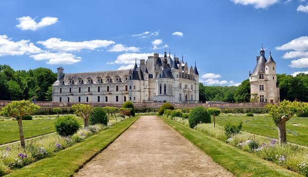 Koninklijk verblijf met toegang tot het kasteel van Chenonceau!