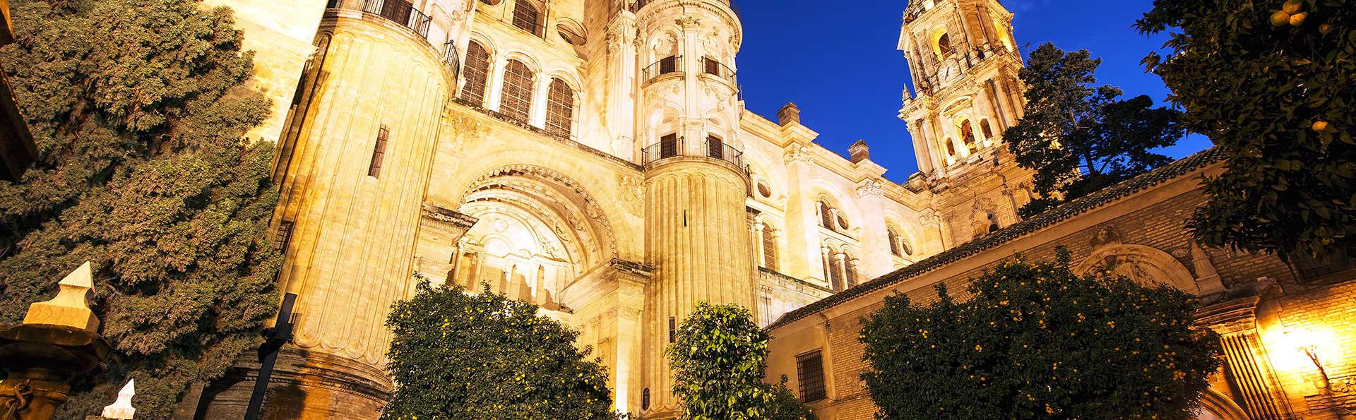 Escapada cultural con visita al Museo Picasso de Málaga