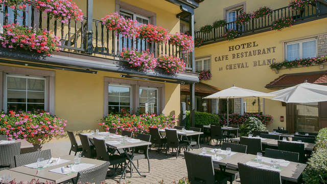 Best Western Hotel Au Cheval Blanc Mulhouse Nord - patio