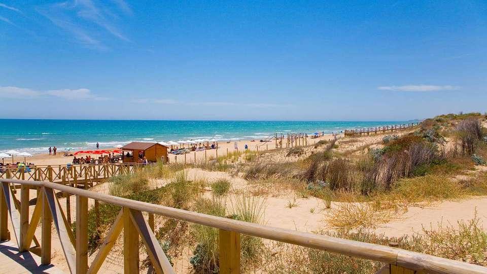 Hotel Playas de Guardamar - edit_Camino_de_Hotel_a_la_Playa.jpg
