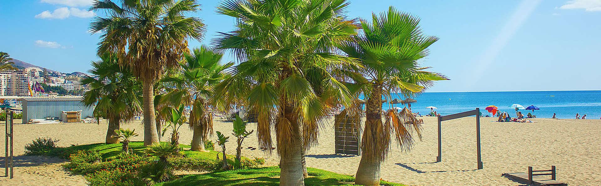 Hotel Las Palmeras - edit_fuengirola1.jpg