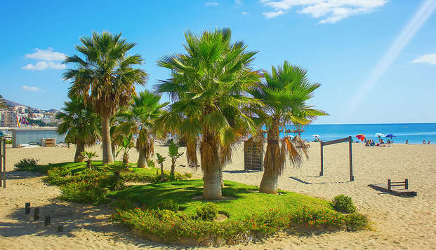 Découvrez les magnifiques plages de la Costa del Sol, à Fuengirola
