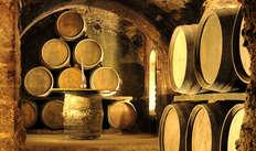 1 Bezoek aan de wijnkelders Cosechero Reunidos Coop voor 2 volwassenen
