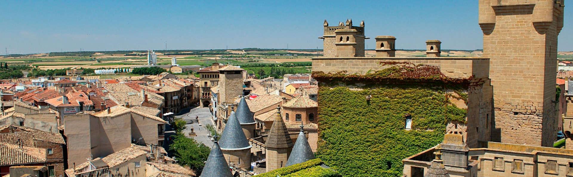 Découvrez l'œnologie et le château d'Olite en Navarre (à partir de 2 nuits)
