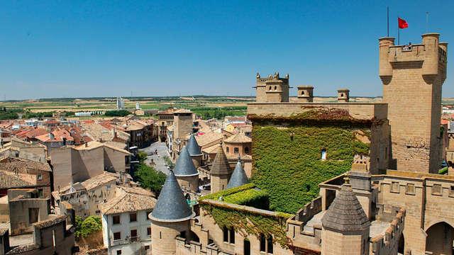 Escapada con Visita a Bodega y al Castillo de Olite de Navarra (desde 2 noches)