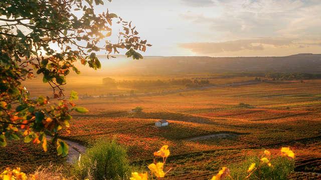 Disfruta a tu aire del entorno natural de La Rioja en un exclusivo apartamento