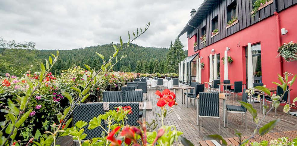 les jardins de sophie 4 xonrupt longemer francia. Black Bedroom Furniture Sets. Home Design Ideas