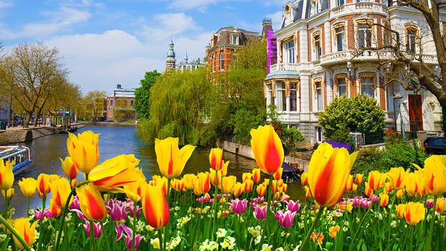Culture, histoire et shopping à Amsterdam