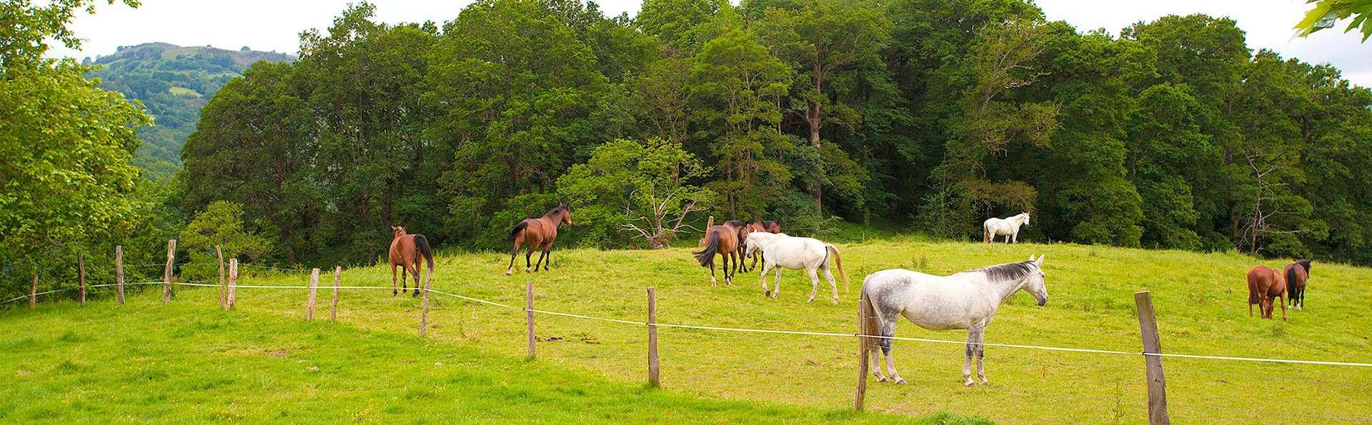 Disfruta de un Paraíso Natural a caballo (desde 2 noches)