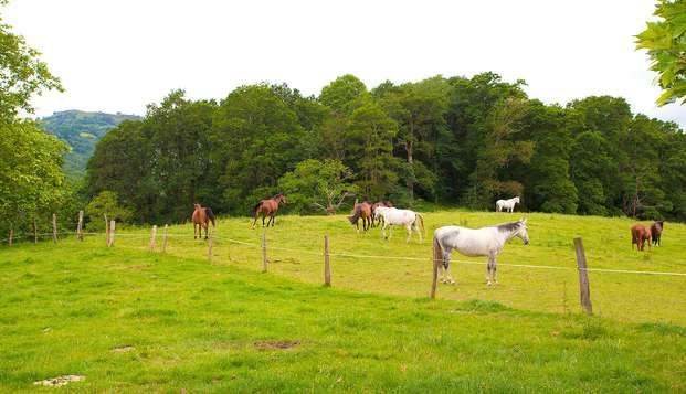 Disfruta de un paraíso natural con paseo a caballo (desde 2 noches)