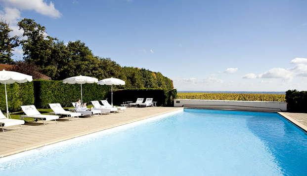Chateau de Pizay - Pool