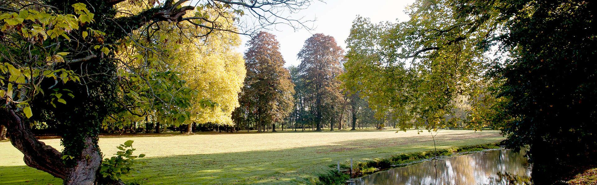 Château de Saulon - Edit_garden6.jpg