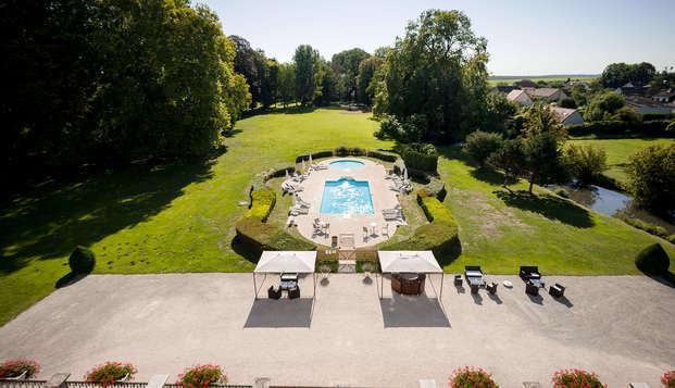 Chateau de Saulon - Pool