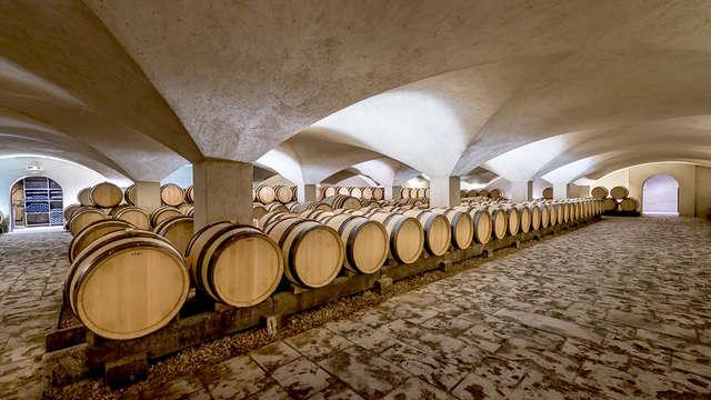 Culture et dégustation de vins au cœur du centre historique de Dijon