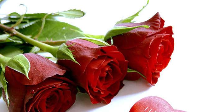 Saint-Valentin romantique avec détente et gourmandise sur la Côte d'Opale