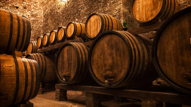 1 Bezoek aan de wijnkelders Celler Mas Vicenç voor 2 volwassenen
