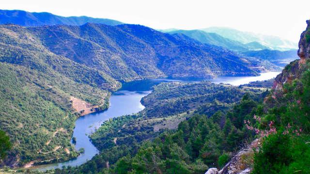 Naturaleza y cata en las bodegas Mas Vicenç en las montañas de Prades